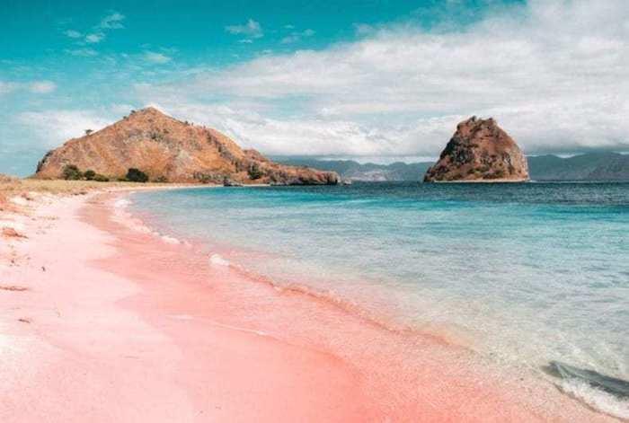 komodo cruises labuan bajo pink beach